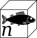 Nano Aquarium Tipps